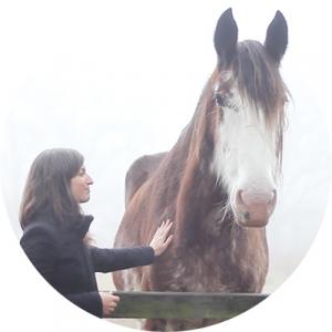 hypnose nantes gaelle lasne cheval equitation