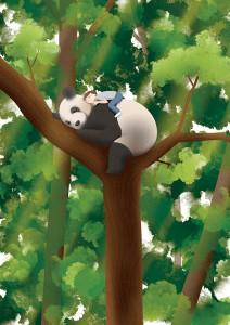 panda_web